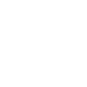 Bridges & Culverts [ICON]